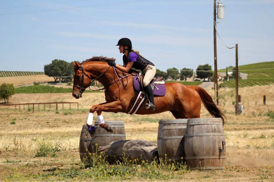 Athlete of the Month: Equestrian rider Tania Senter