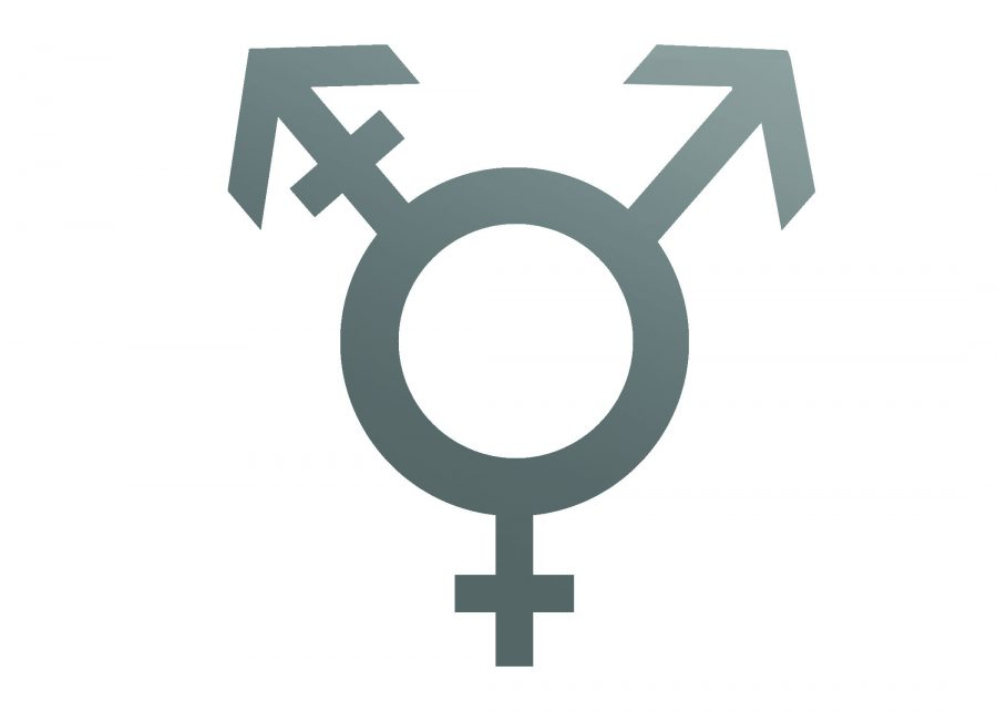 Gender identity policy makes progress, but needs work