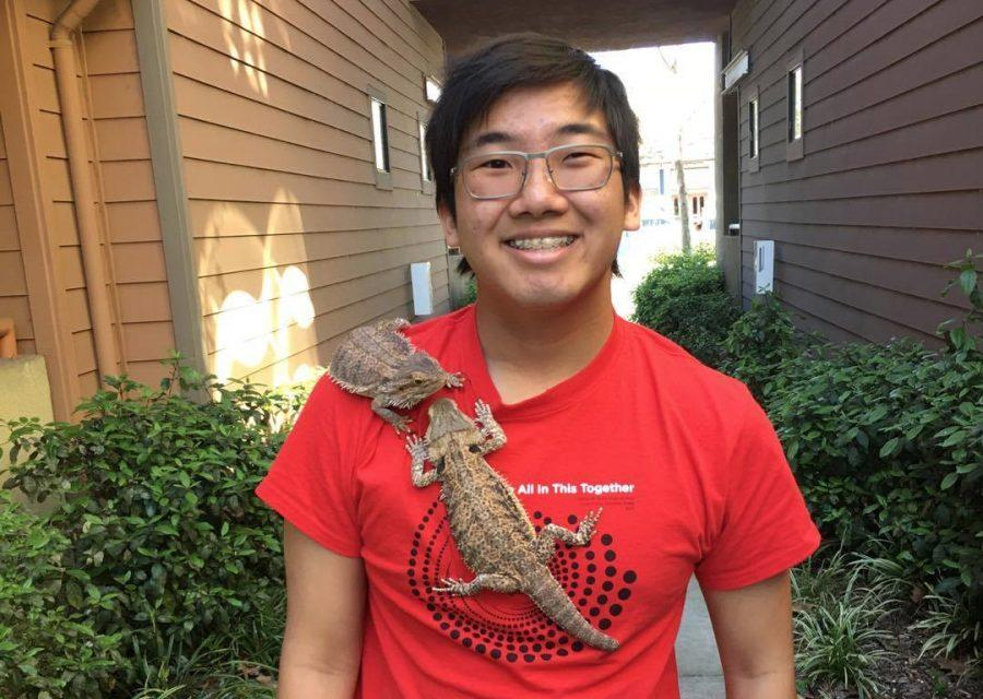 Students showcase their unique pets: Allen Su, bearded dragons