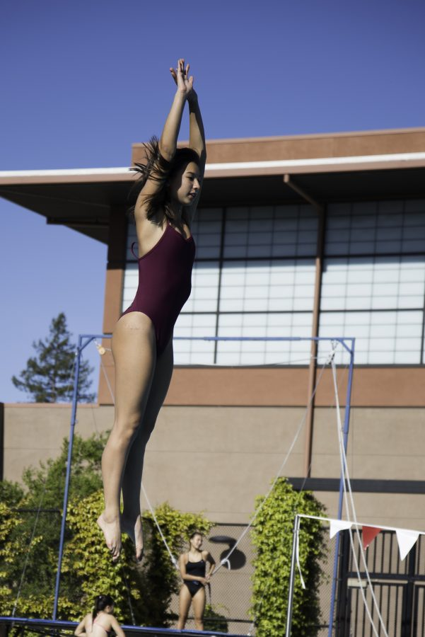 Spring sports race through the start of their season: Diving