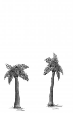 palm.tree