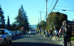 Accident raises concerns regarding bike safety