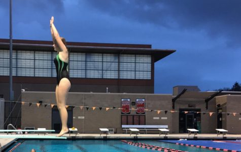 Spring sports kick off season with strong start: Diving