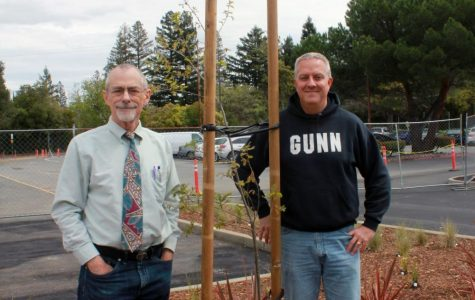 The Ultimate Tree-o: The in-tree-guing story of how Mr. MacLean and Mr. Ledgerwood planted an acorn