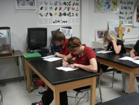 English electives adapt to inclusionary co-teaching model