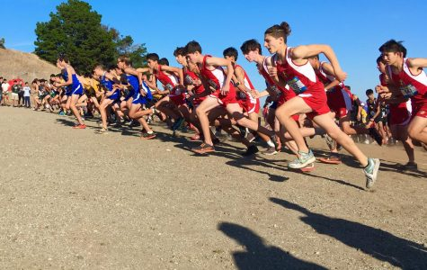 Athletes express concerns over cross country team tensions