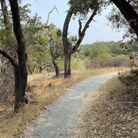 Arastradero Preserve